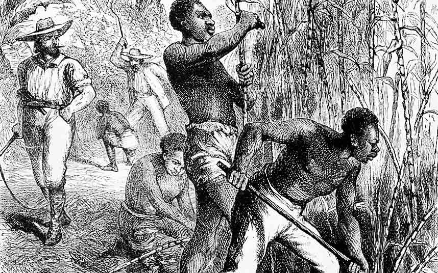 Drawing of slaves working in the fields as an overseer watches them.